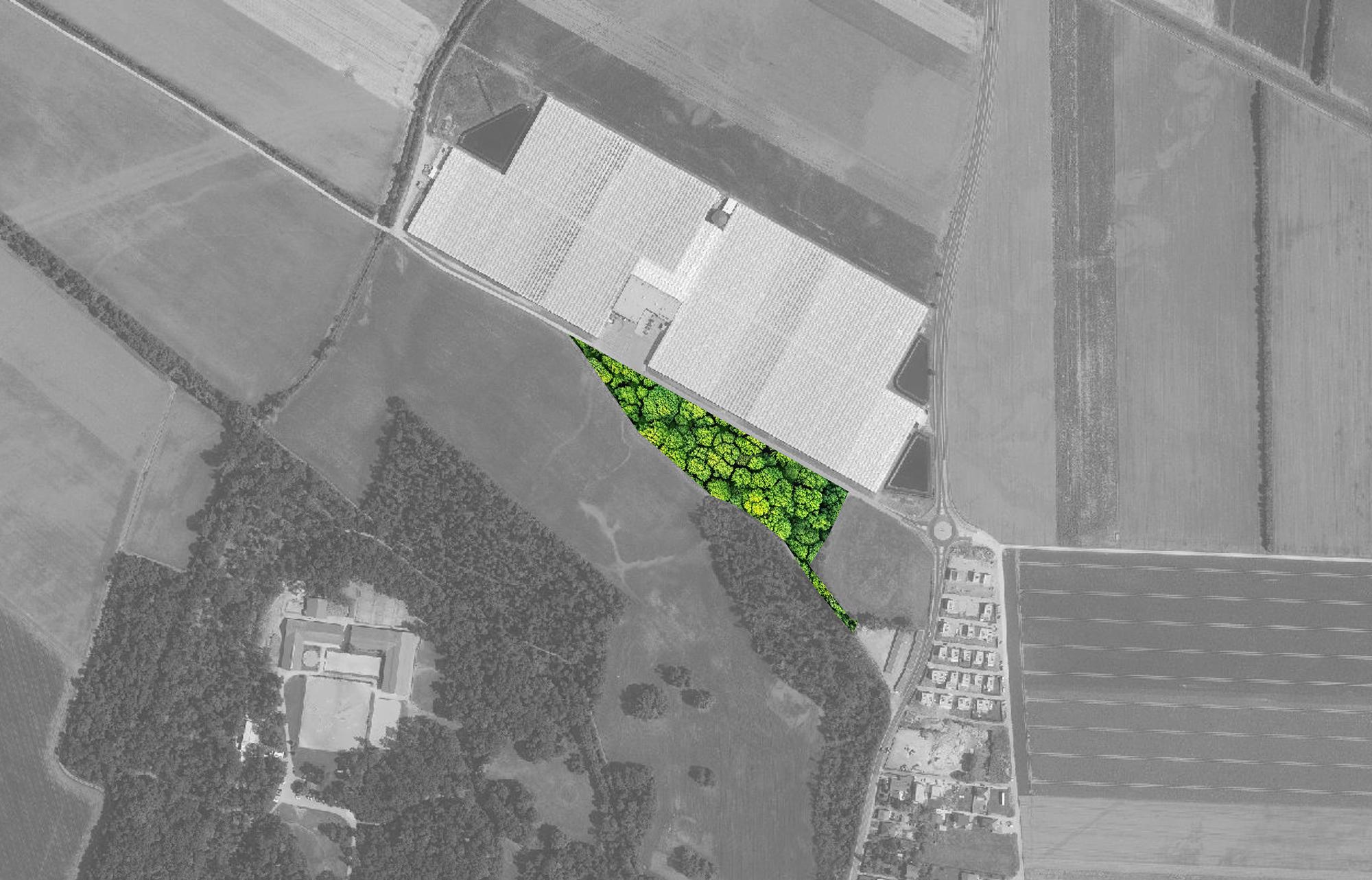reforestation area | noe atlas/barus.at