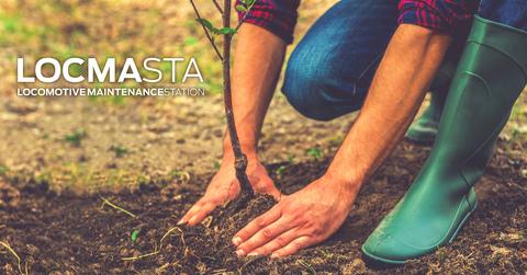 LOCMASTA | Update #4 - der 'LOCMASTA'-Wald
